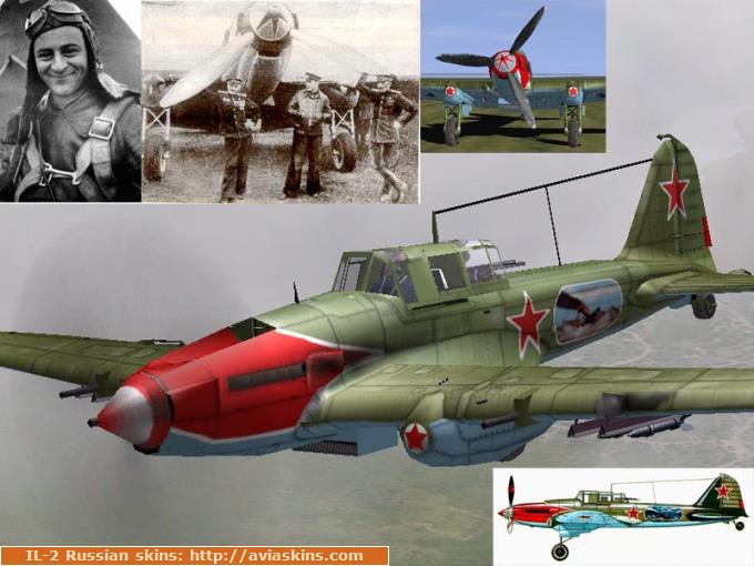 IL-2M Early 47 ShAP